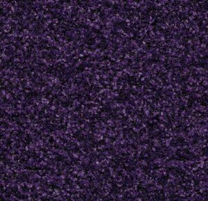 Purple Insert